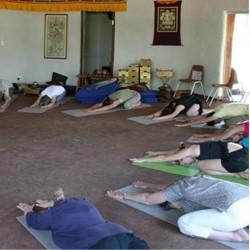 Tara Rokpa Therapy